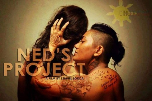 neds-project-600x400